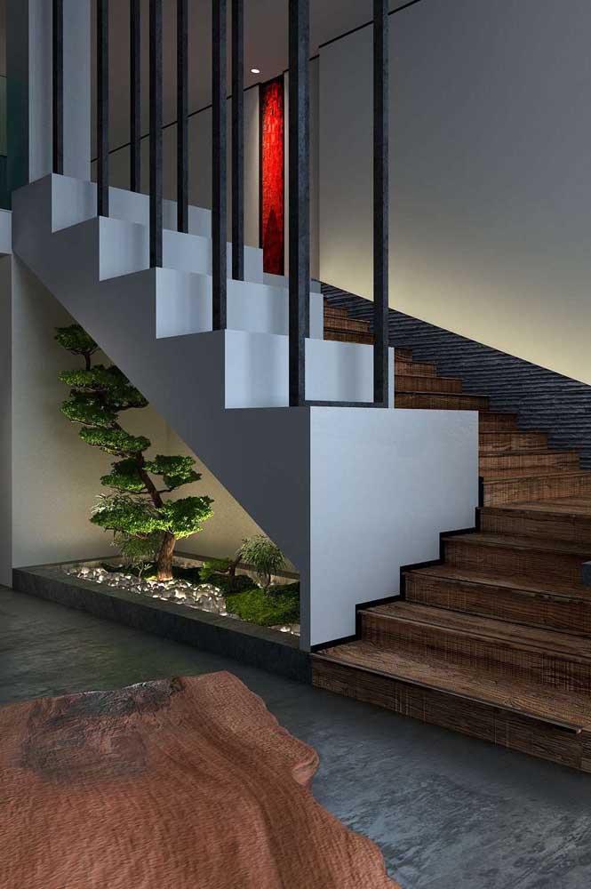Olha que ideia genial: cultive seus bonsais no vão embaixo da escada