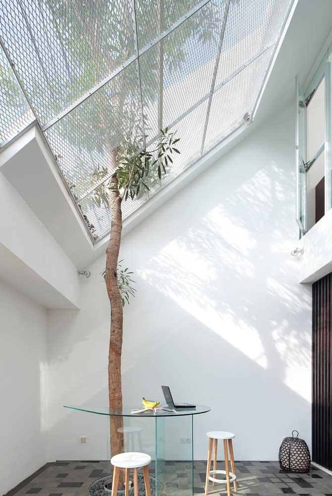 A parte interna dessa casa planejada trouxe um teto translúcido lindo no espaço que funciona como jardim de inverno