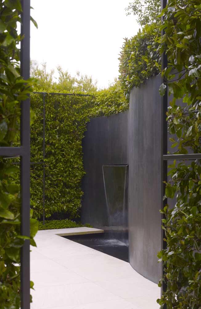 Essa cerca viva pode crescer em torno das grades que circundam o ambiente externo
