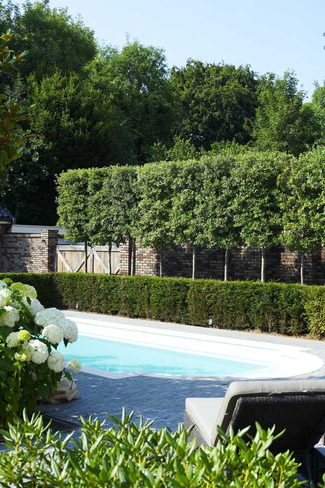 O visual da natureza fica muito mais aparente com as cercas vivas incluídas na decoração da área externa