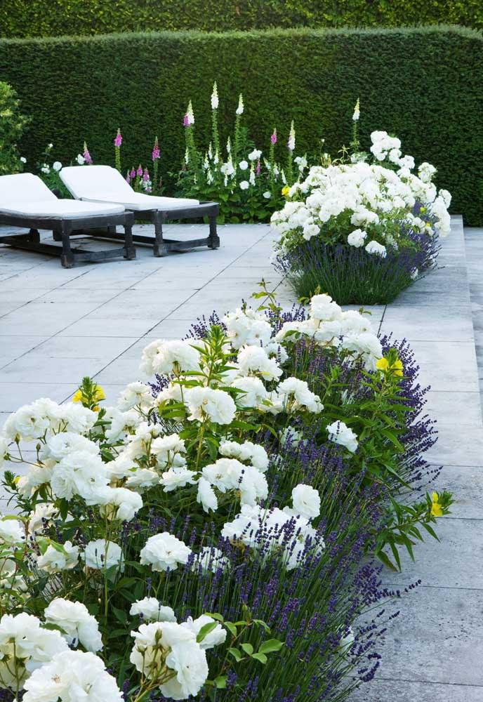 A cerca viva florida deu um tom clássico e delicado para esse espaço externo