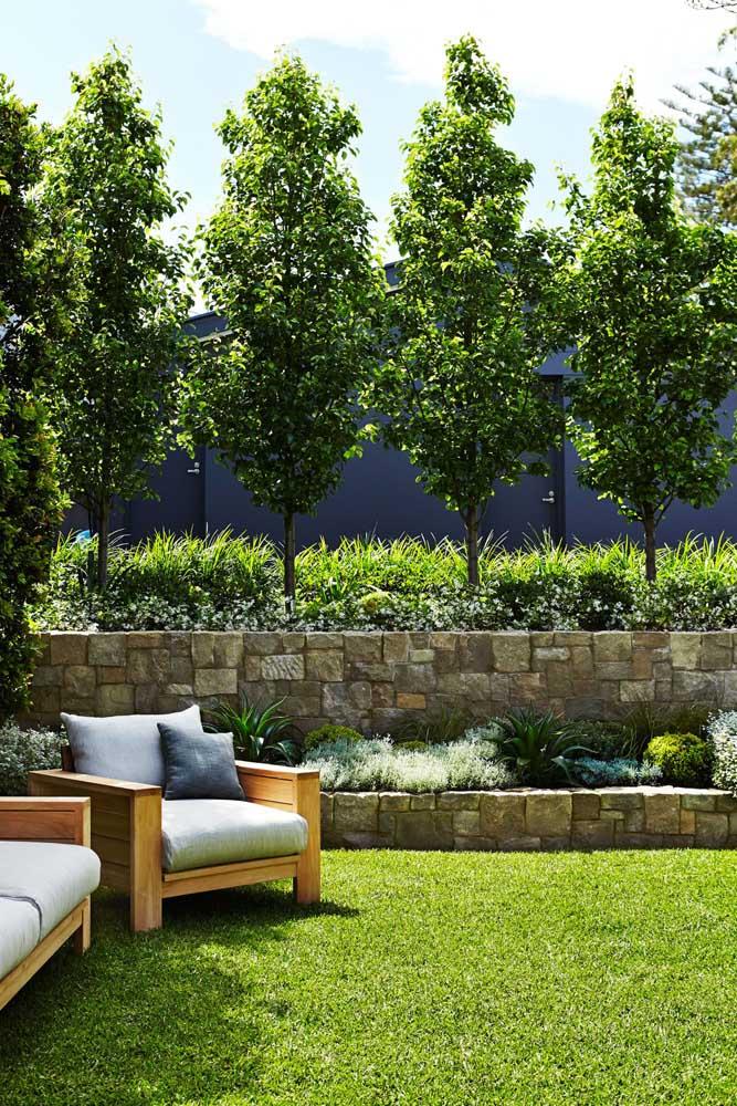 Cerca viva com canteiro verde para o jardim elegante