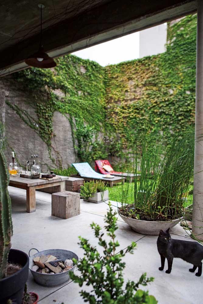 Espaço gourmet e jardim com cerca viva no estilo trepadeira
