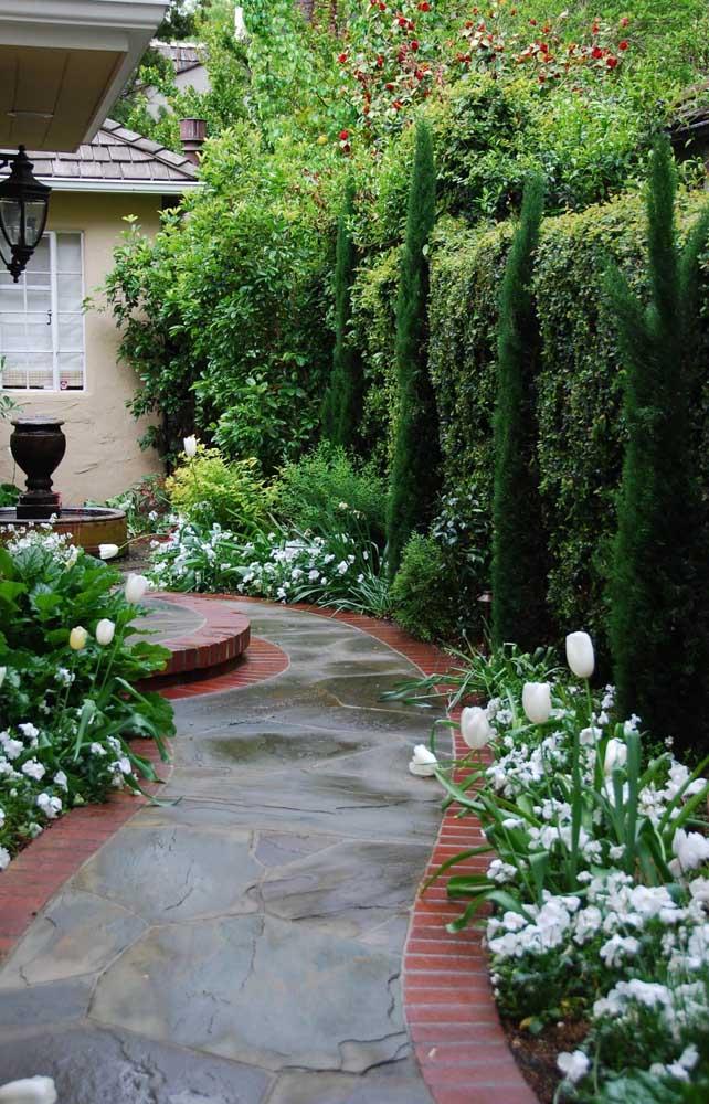 Cerca viva intercalada com alguns pinheiros, flores e outras plantas