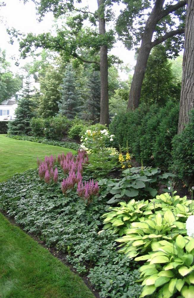 A cerca viva deste jardim ganhou diversas espécies e delimitou de forma elegante o espaço