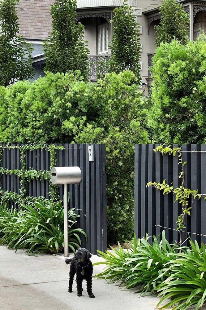 Esse estilo de fachada é muito comum em casas americanas, caracterizada pelo uso da cerca de madeira acompanhada de plantas