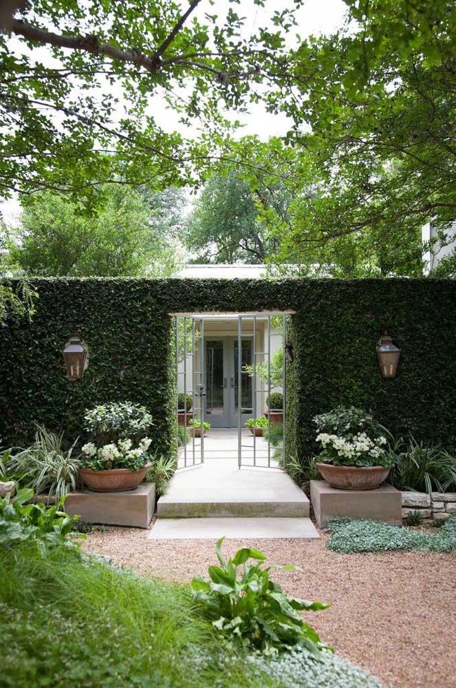Casa com fachada verde com planta do tipo trepadeira para abraçar o muro por inteiro