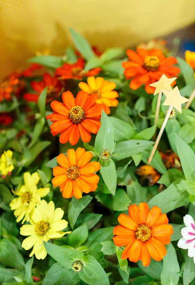 Por que não arriscar e fazer uma decoração somente com flores?