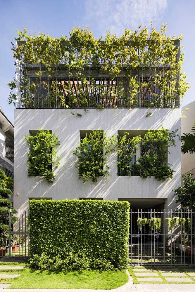 Frente de casa verde – literalmente!