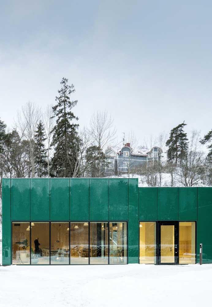 A brancura da neve foi lindamente contrastada com os painéis azuis que cobrem a frente da casa