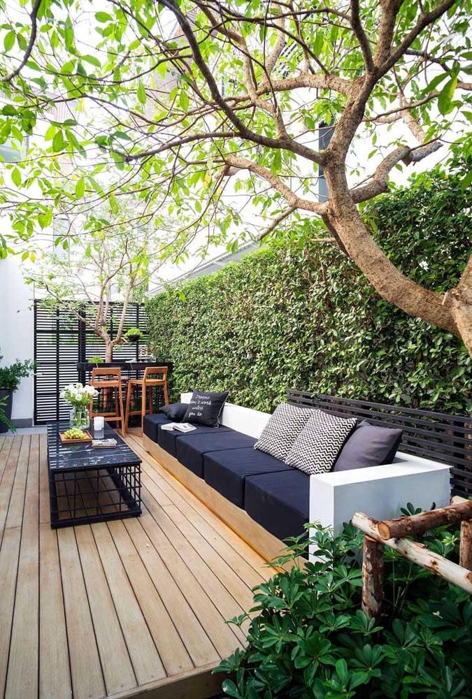 Opção de jardim simples e fácil de fazer: crie uma parede verde