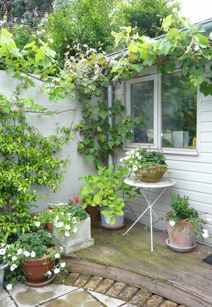 Jardim nem sempre precisa ser escavado no chão, ele pode ser feito apenas com vasos, como esse da imagem