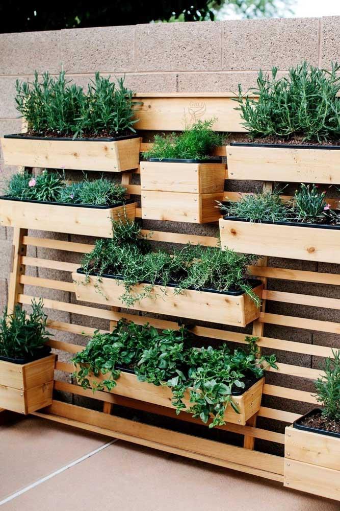 Jardim vertical de ervas e temperos: una a beleza das plantas com as possibilidades terapêuticas e culinárias que elas oferecem