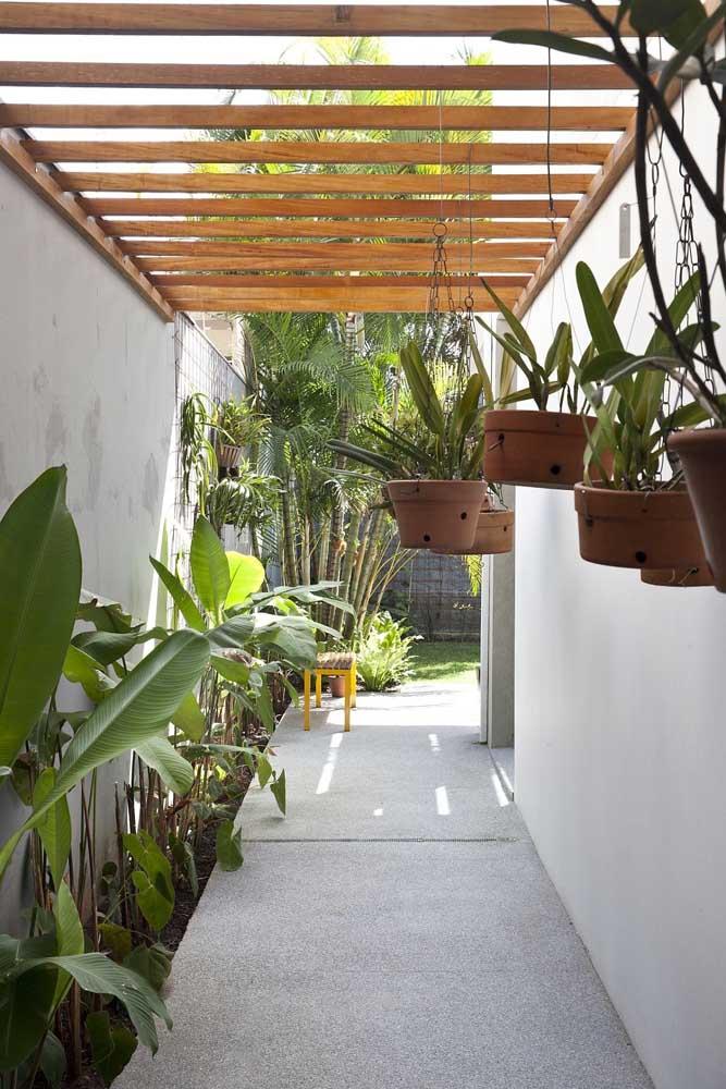 Aqui, o pergolado de madeira suspende os vasos de orquídeas; enquanto isso no chão, um pequeno canteiro de bananeiras de jardim