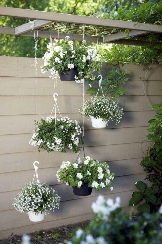 Linda composição de plantas com flores brancas para esse pequeno jardim suspenso