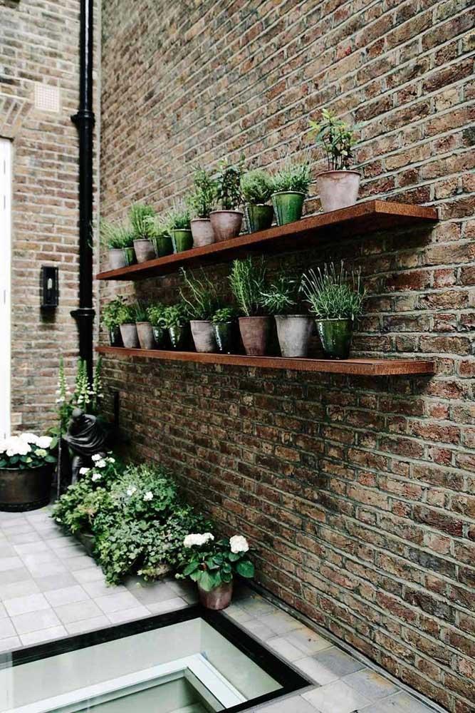 Jardim na prateleira: olha que ideia simples e criativa