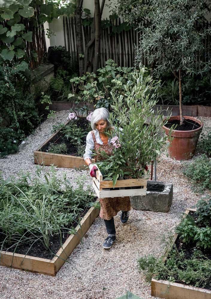 Canteiros de madeira formam esse pequeno jardim