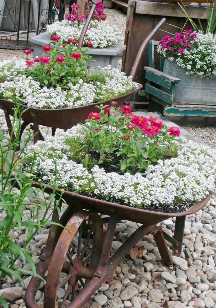Resgate objetos perdidos e que perderam o valor para compor a decoração do seu jardim simples