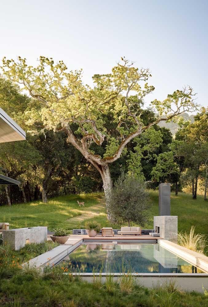 Piscina de fibra cercada por natureza e acompanhada de um charmoso espaço gourmet