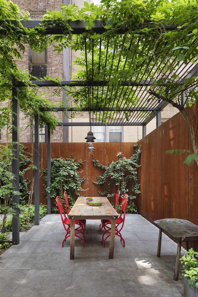 Quer fazer um jardim diferenciado? Use trepadeiras em pergolados e também na parede do ambiente.