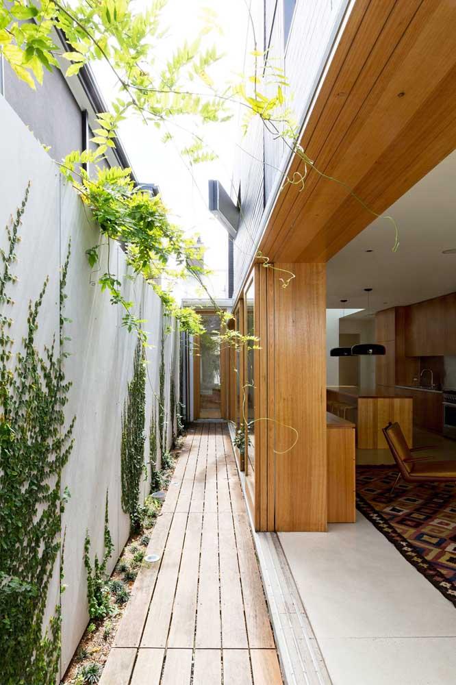 Não coloque apenas a trepadeira na parede da casa, mas faça algumas artes para deixar o projeto paisagístico perfeito.