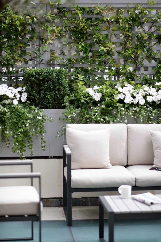 Mais uma vez a rosa trepadeira mostra toda a sua delicadeza e suavidade na decoração da casa.