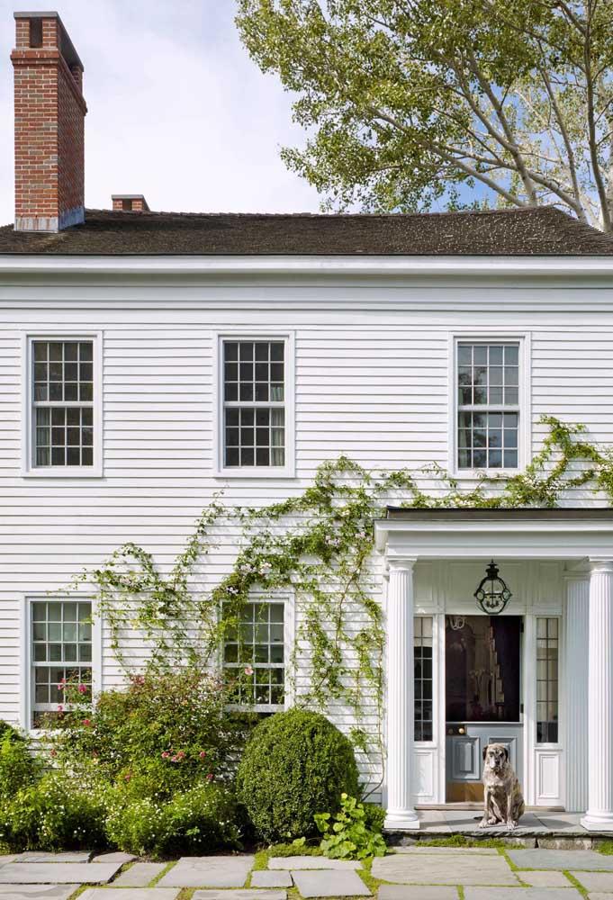 Que tal deixar a trepadeira crescer de forma natural na parede externa da casa?