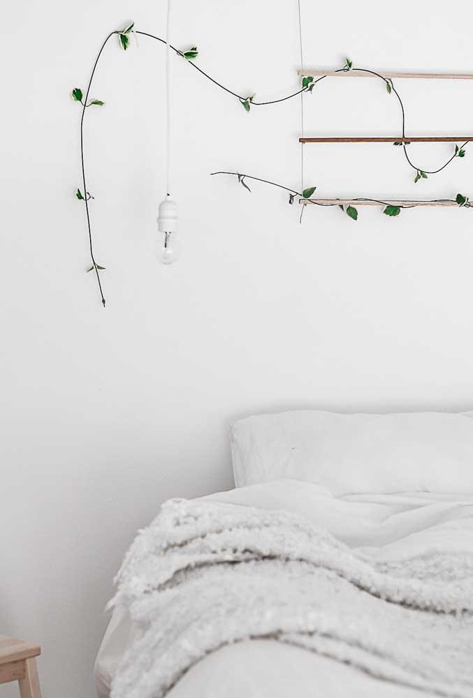 Se você faz questão de ter uma trepadeira no quarto, procure por tipos mais simples.