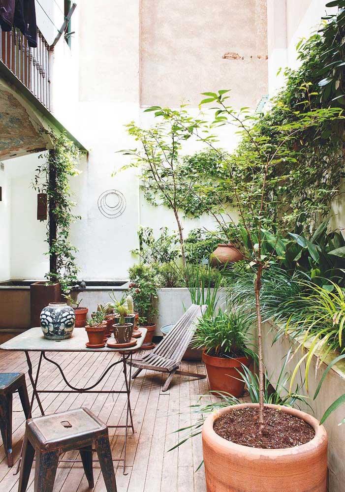 Use diferentes tipos de trepadeira para decorar a parede da área de lazer da sua casa.