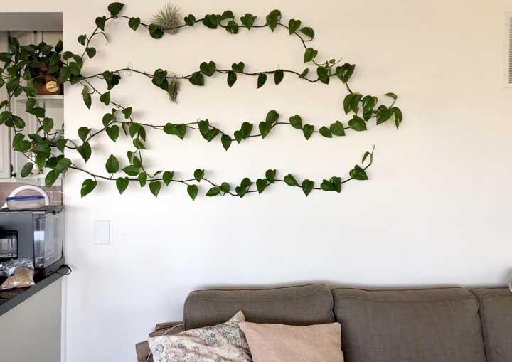 Para segurar os galhos da trepadeira, coloque ganchos na parede de forma que eles fiquem organizados.