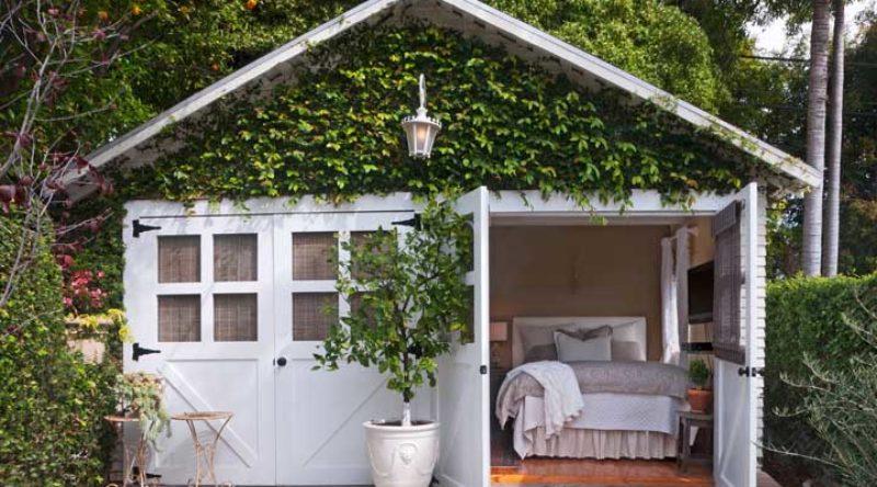 Trepadeira: cuidados e os principais tipos para plantar em casa