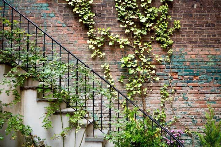 A escada trepadeira é uma excelente forma de deixar o ambiente mais em contato com a natureza e de fazer paisagismo dentro de casa.