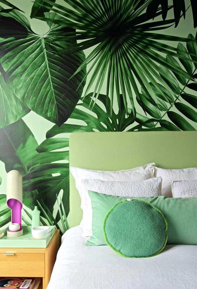 Além da beleza da folha, o verde da Costela de Adão ainda enche os ambientes de frescor e tranquilidade