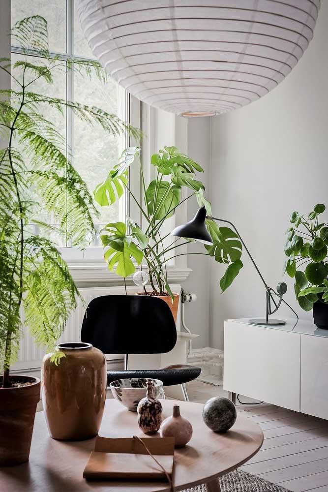 Esse ambiente clean e moderno apostou em um vaso natural e viçoso de Costela de Adão