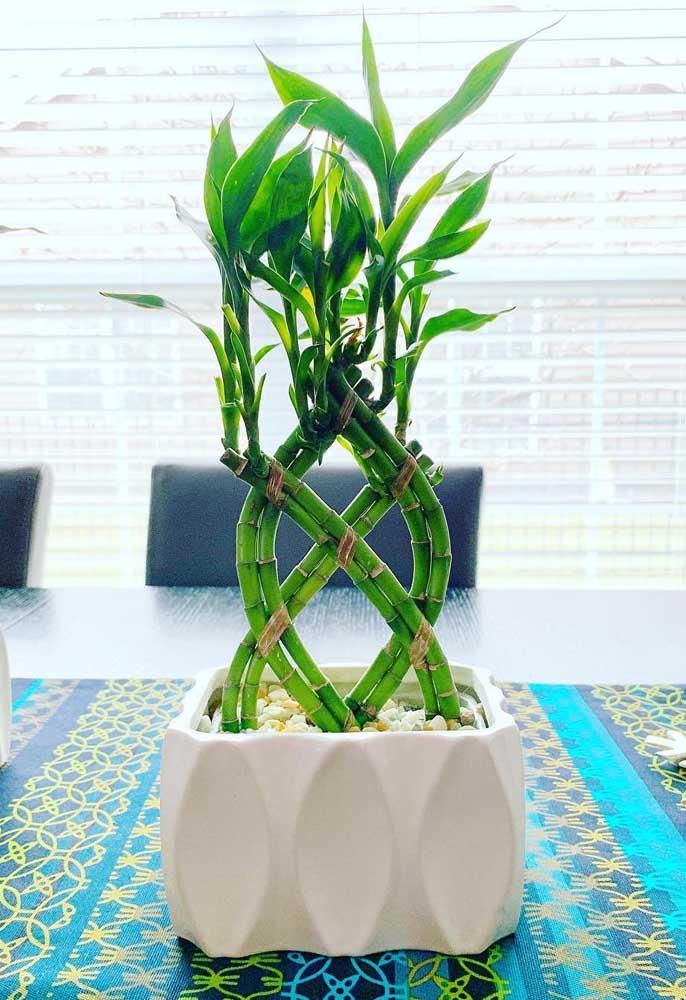 Perceba que as pequenas linhas entre os caules ajudam a formar o desenho no Bambu da Sorte