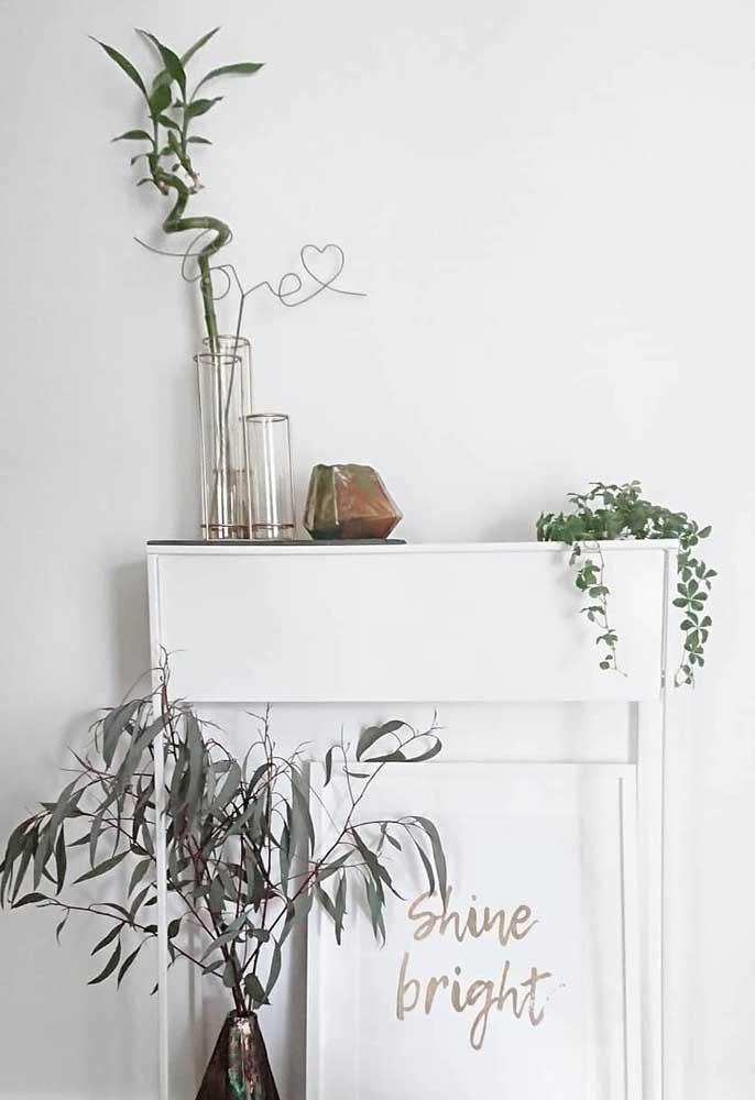 O conjunto de vasos ficou perfeito com a escolha do Bambu da Sorte