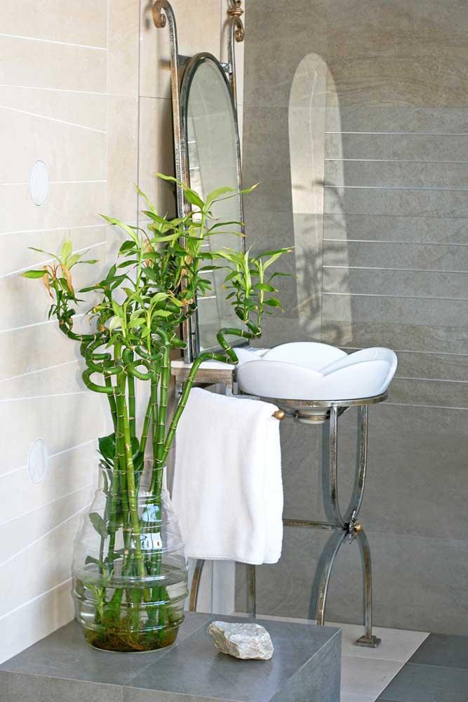 Mais uma opção para levar o verde para o banheiro com o Bambu da Sorte