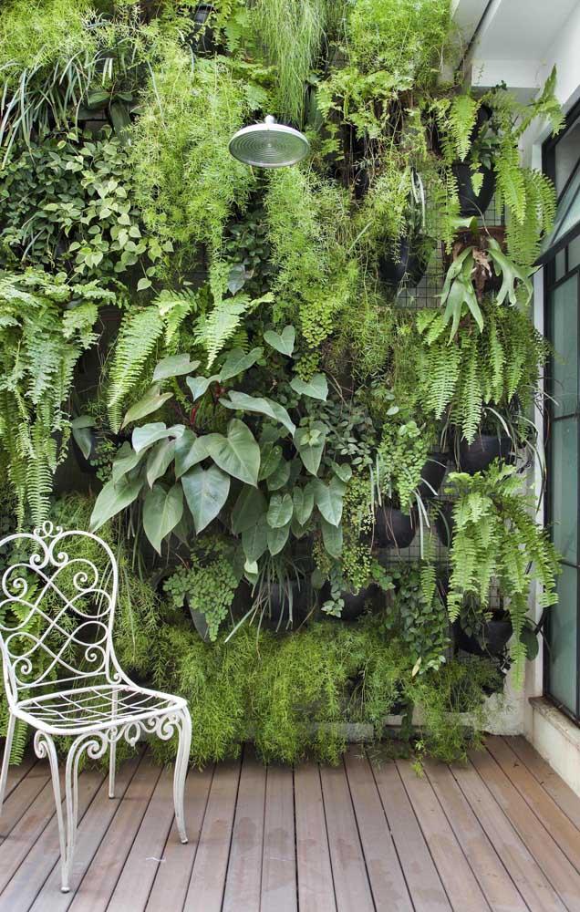 Jardim vertical super tropical com samambaias de tipos variados