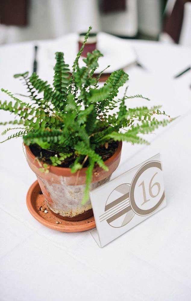 Vasinhos rústicos de samambaia marcam os lugares dos convidados na mesa da festa