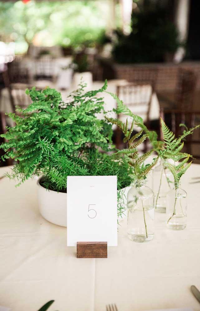Outra linda e criativa opção de decoração de casamento com samambaias