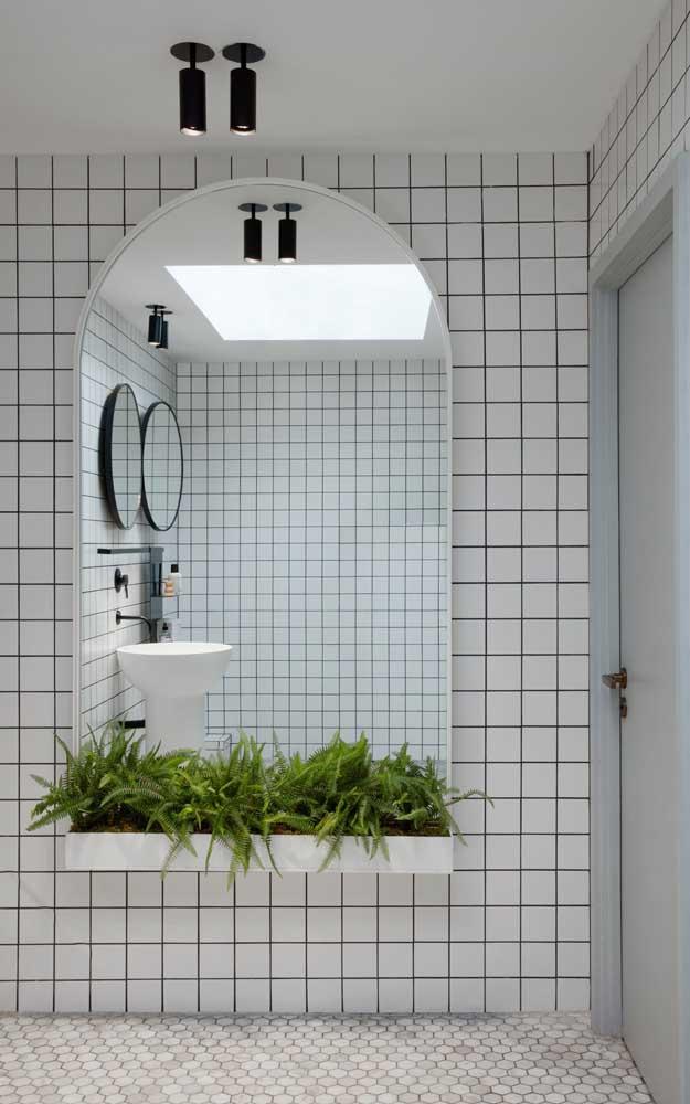 Pensou em ter samambaias no banheiro? O local naturalmente úmido pode se tornar o lar perfeito da planta