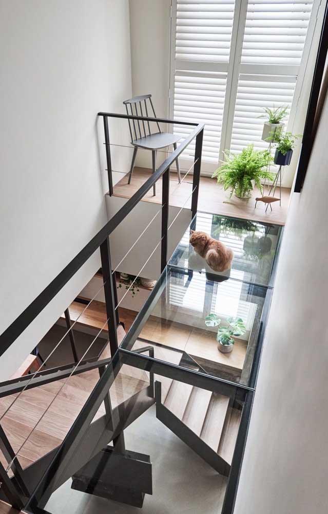 Tem espaços vazios na sua casa? Preencha-os com samambaias