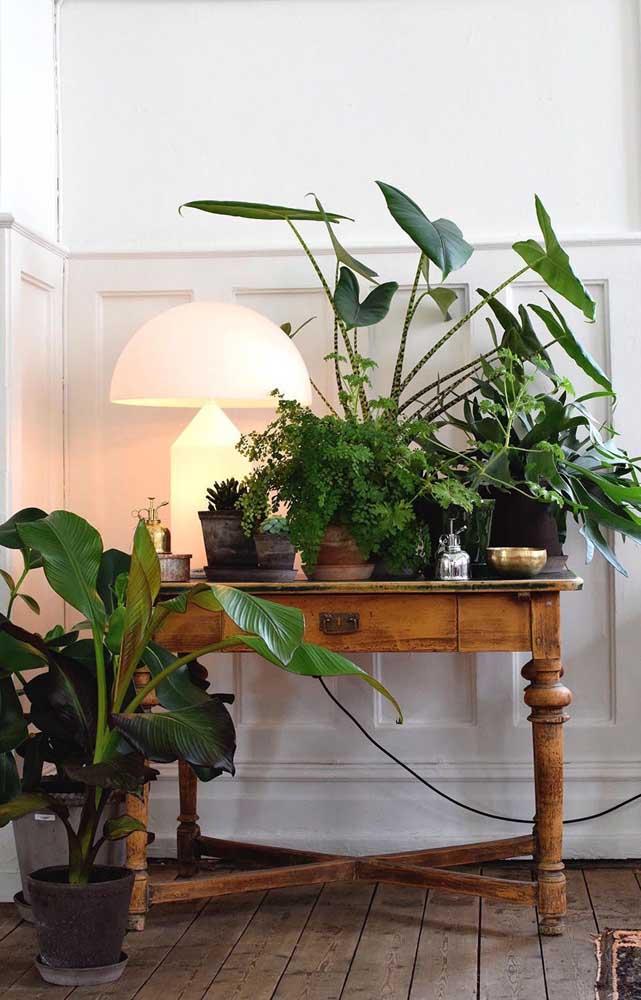 Um aparador, algumas plantinhas e está feita a decoração do hall de entrada