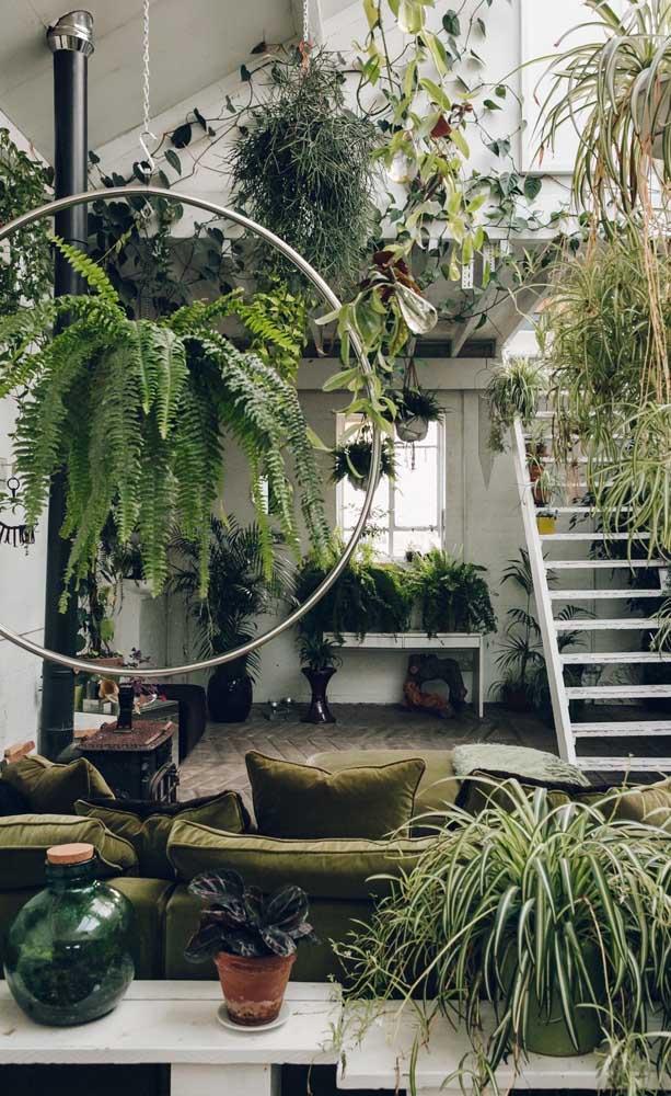 Que belo espaço verde criado nessa casa; a samambaia vem logo à frente, suspensa pelo arco de metal