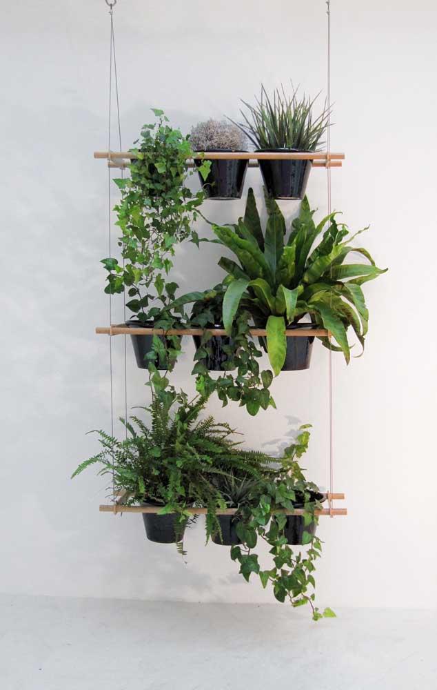 Coloque samambaias no suporte suspenso e combine-as com outras plantas