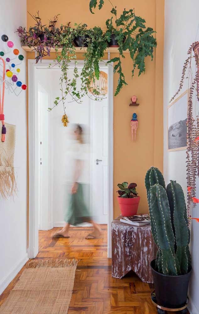 Não sabe como inserir plantas na decoração? Que tal essa ideia, uma prateleira sobre a porta com plantas pendentes, entre elas a samambaia