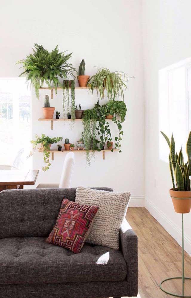 Anote essa receita: prateleiras e plantas! Só isso para criar uma sala de estar encantadora e muito receptiva