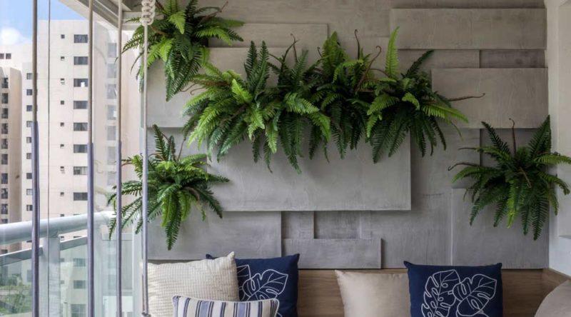 Samambaia: como cuidar, como plantar e dicas de decoração