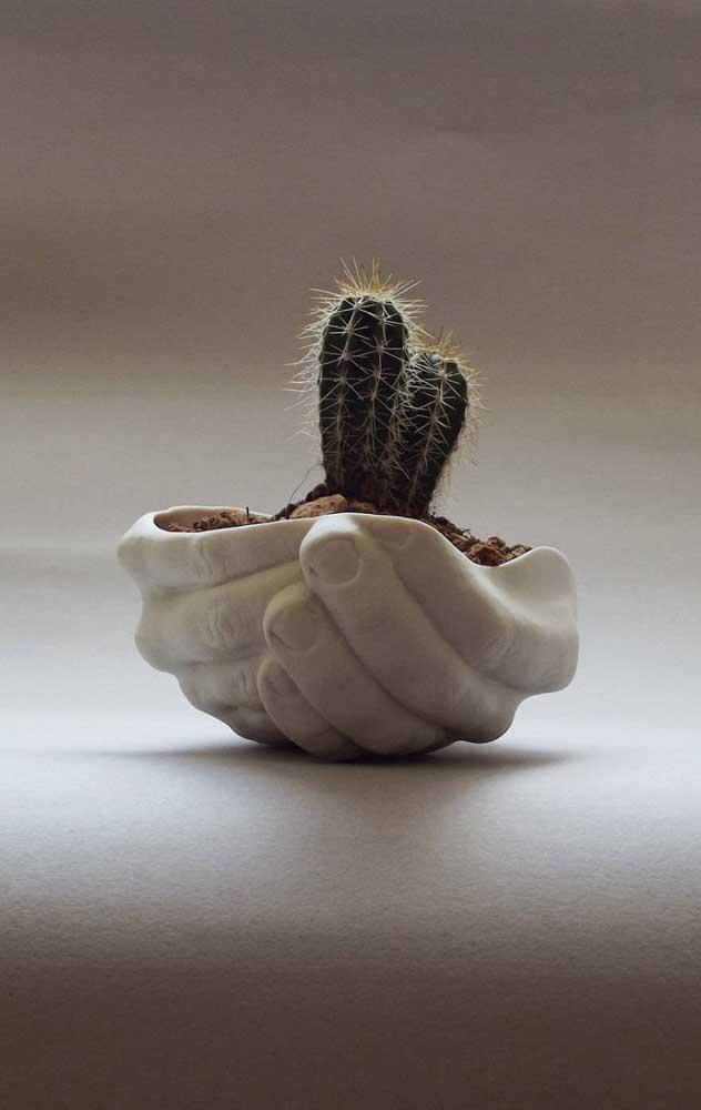 As suculentas já chamam bastante atenção, imagina se você colocá-las dentro de vasos diferenciados.