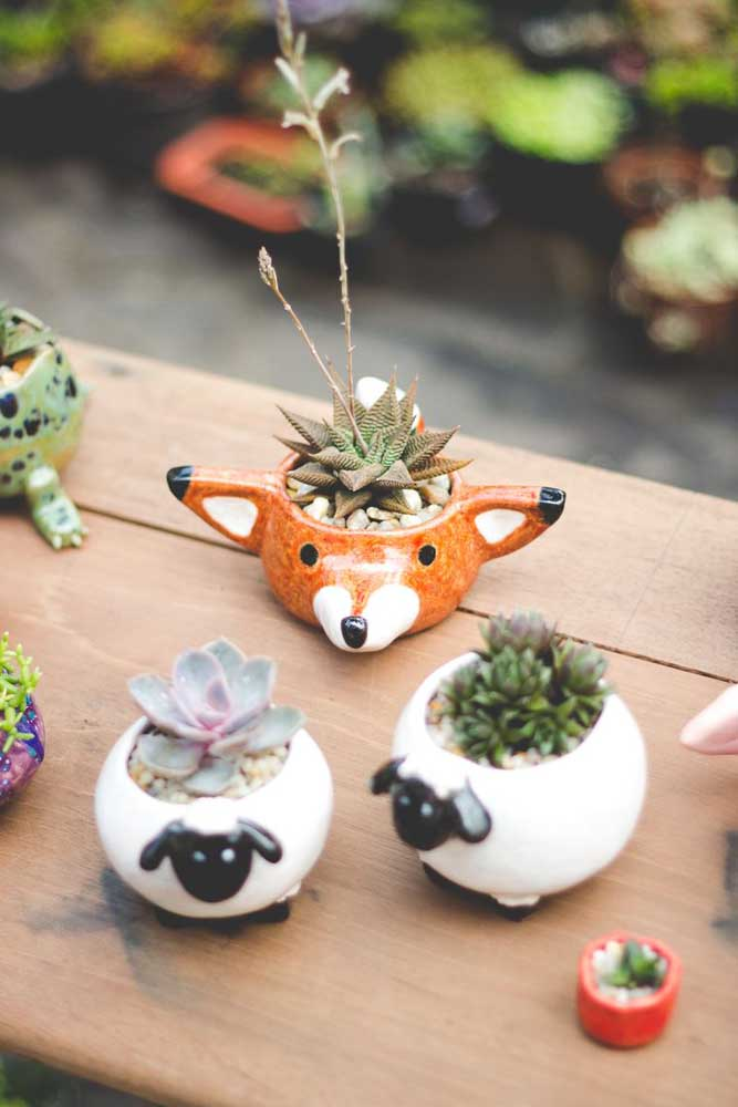 Que tal usar vasos divertidos para plantar suas suculentas? Pode ter certeza de que a sua decoração deve ficar ainda mais especial.